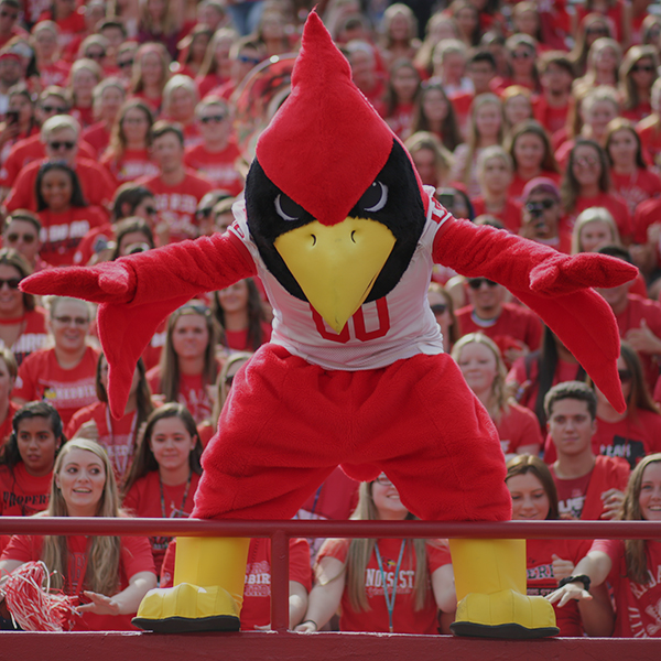 Reggie mascot standing in front of the student section at a football game, staring at the camera.