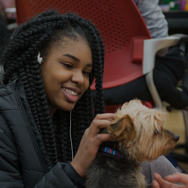 Student petting a therapy dog in the library.